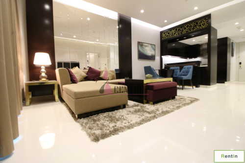 1 Bedroom Brand New Fully Furnished Apartment