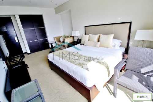Exclusive | Fully Furnished | Studio